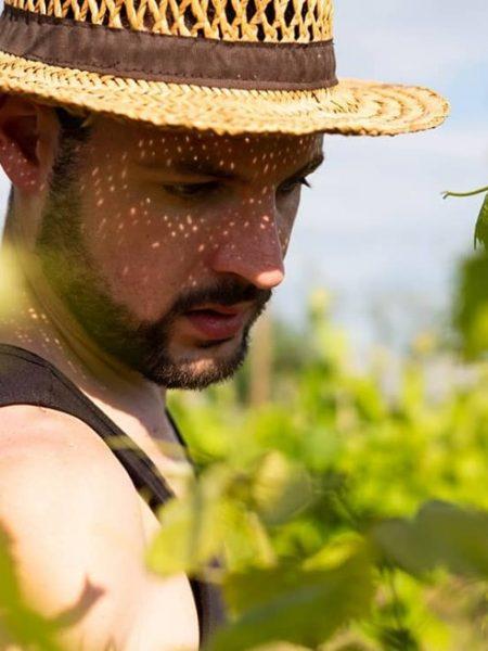 Simone Milocco nelle vigne.